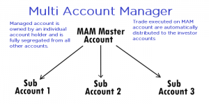 What are MAMM Forex Accounts?