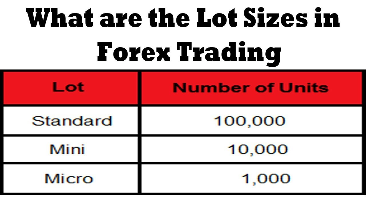 What is Forex Lot Size