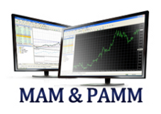 What are MAM Forex Accounts? What are PAMM Forex Accounts?
