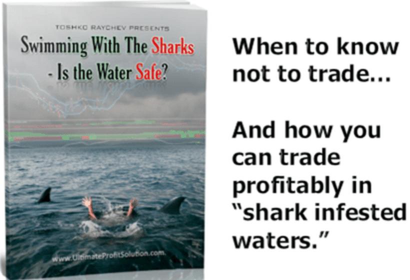 Ultimate Profit Solution, 'Trading For Beginners' Bonus